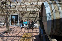 En Inniskillin Winery, se pueden probar y comprar los dulces y refinados vinos de hielo.