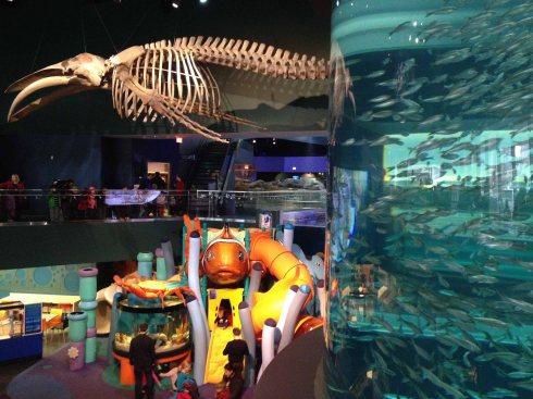 Ripley's Aquarium, Toronto.