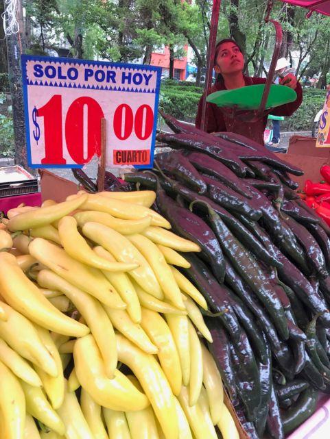 Se conocen más de 200 variedades de chiles y todos tienen su origen en el continente americano.