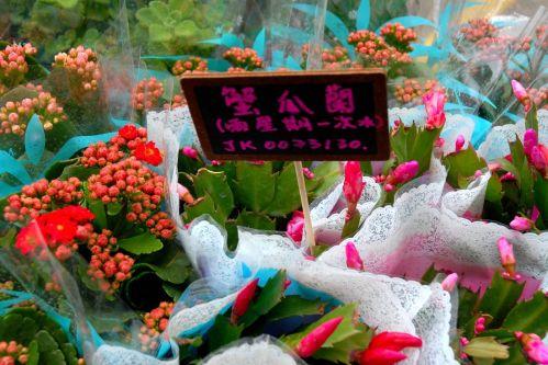 Mercado de flores en Hong Kong.