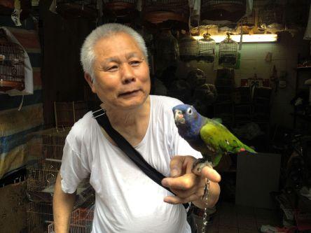 Mercado de pájaros en Hong Kong.