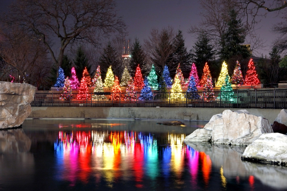 Lincoln Park ZooLights, Chicago.