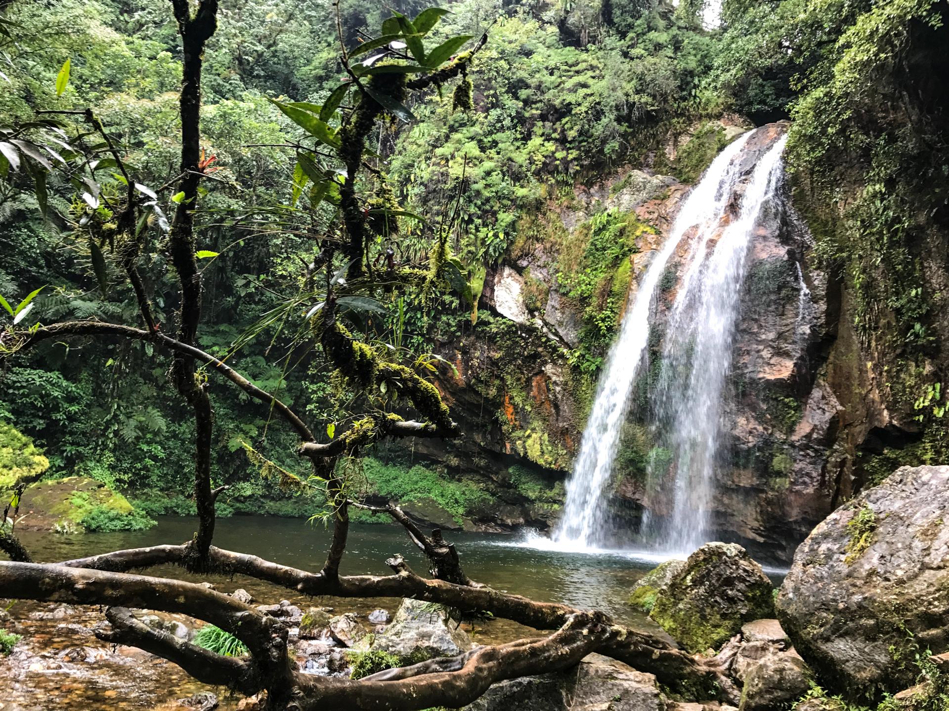 Cascada el Salto es una de las cascadas de Puebla más hermosas.